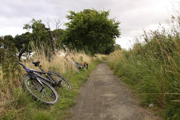 Ścieżka rowerowa nad kanałem