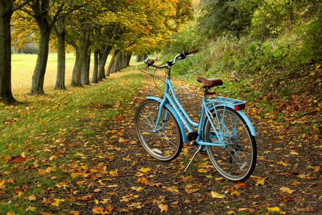 jazda rowerem jesienią, rower jesienią, jak jeździćrowerem jesienią,