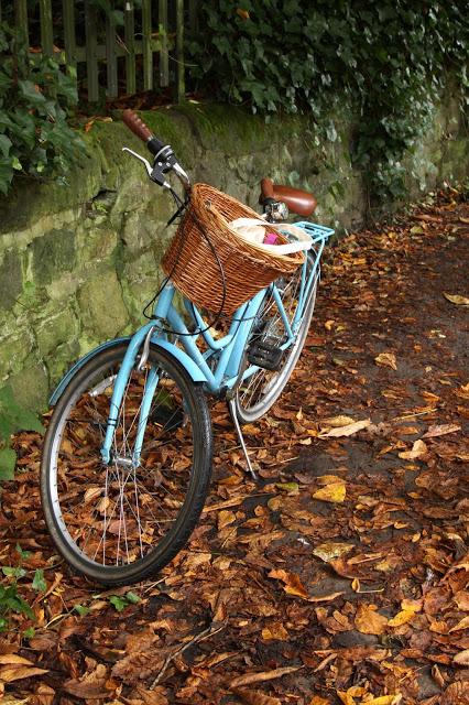 rower jesienią, rowerem jesienią, jazda rowerem jesienią,