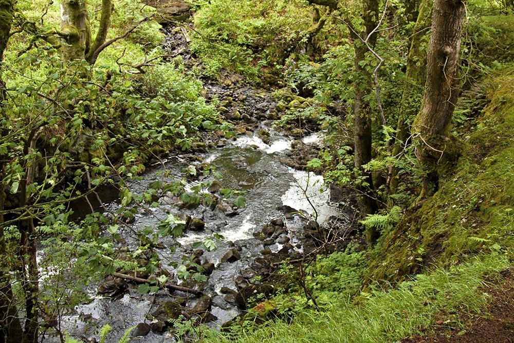 rzeka Linhouse wodospad