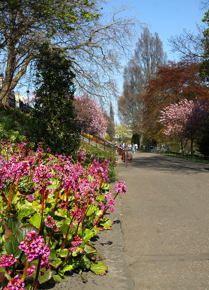 sprin in princes street gardens