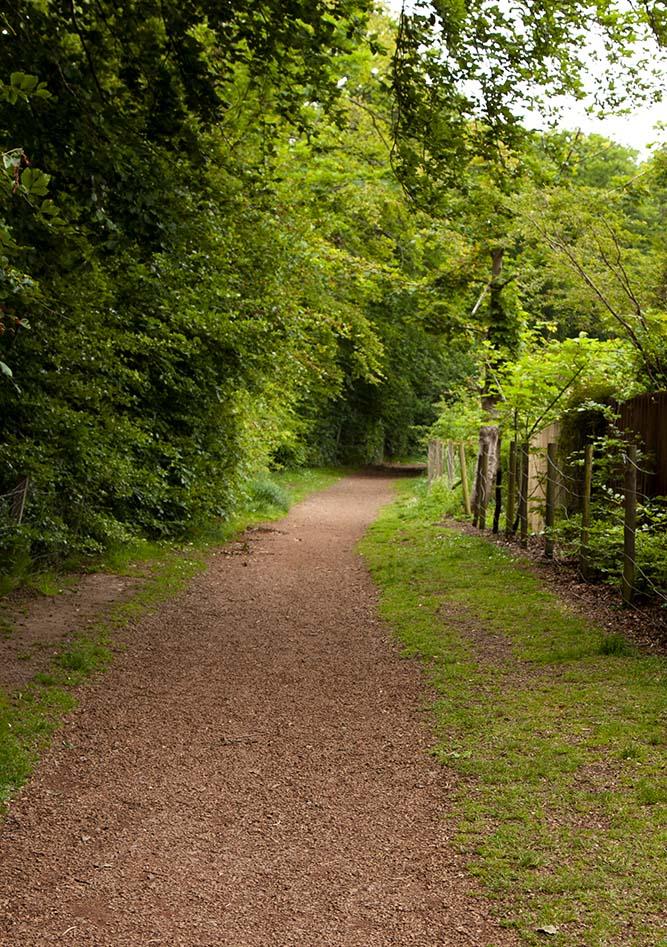 Murieston trail