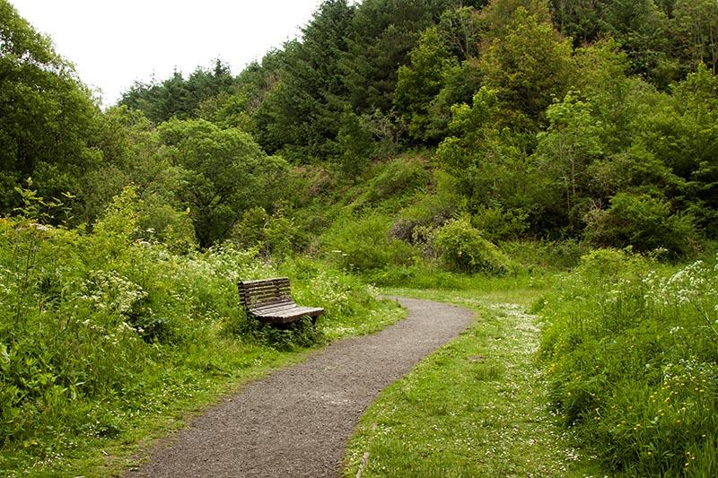 Murieston path
